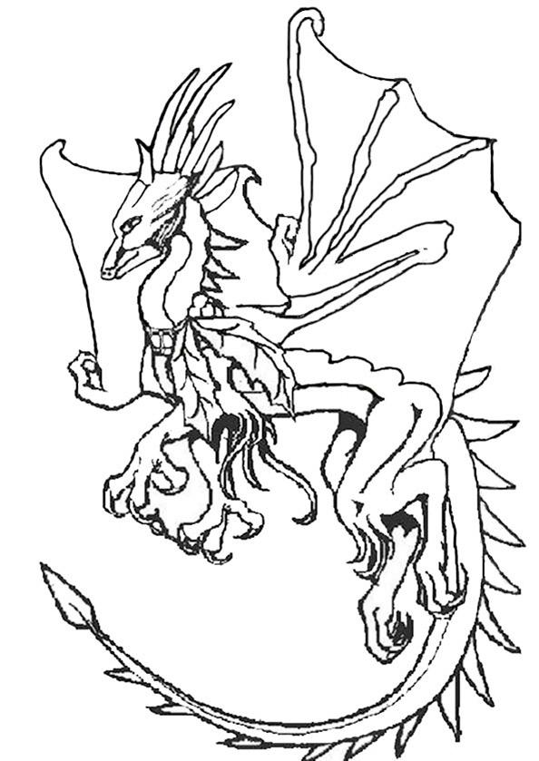 Dragons (11)