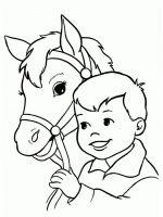 Pferde (2)