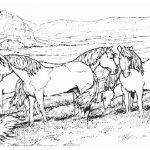 Ausmalbilder Pferde 3