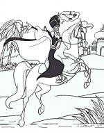 Pferde (9)