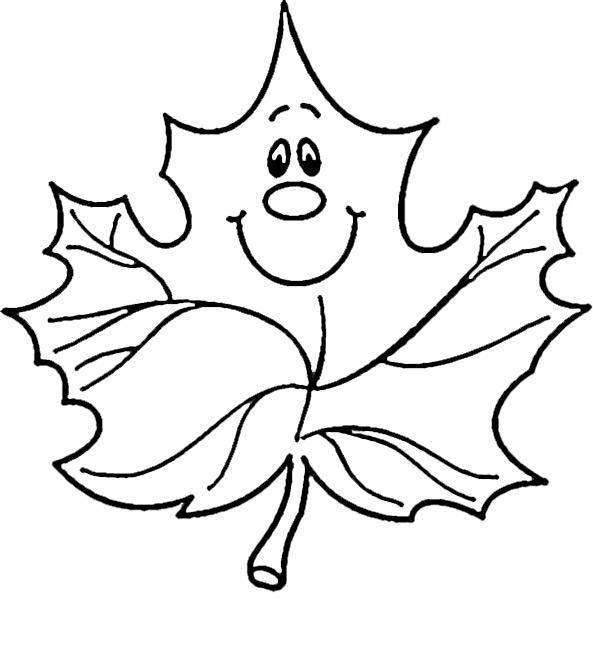 Blätter (1)