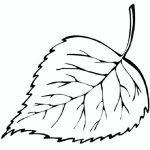 Ausmalbilder Blätter, Bild 4
