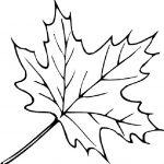 Ausmalbilder Blätter. Bild 8